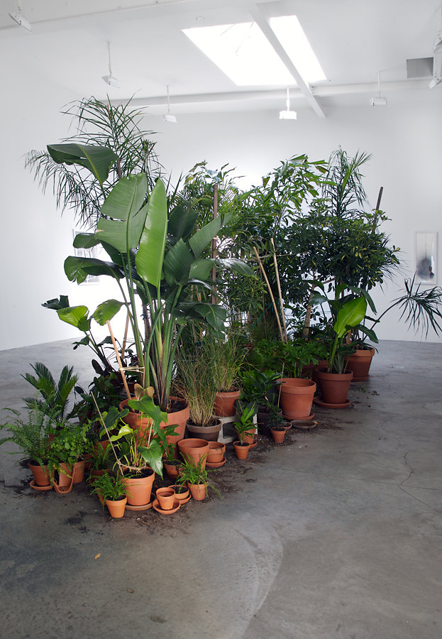 ONCE REMOVED INSTALLATION VIEW II